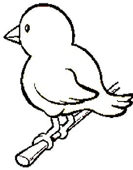 kleurplaat vogeltje